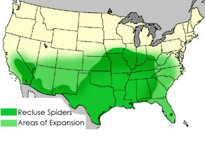 brown-recluse-spiders map